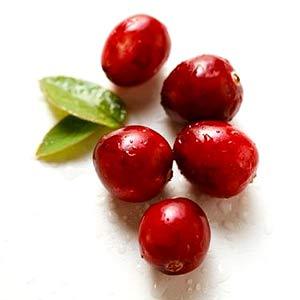 cranberries-afvallenmettips